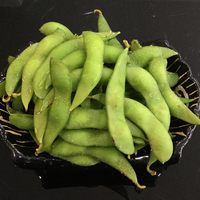 Salted Green Soybeans